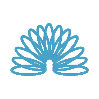 Flexible Loans icon